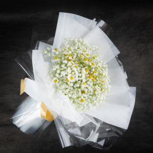 Off White Daisy and Baby Breath Bouquet